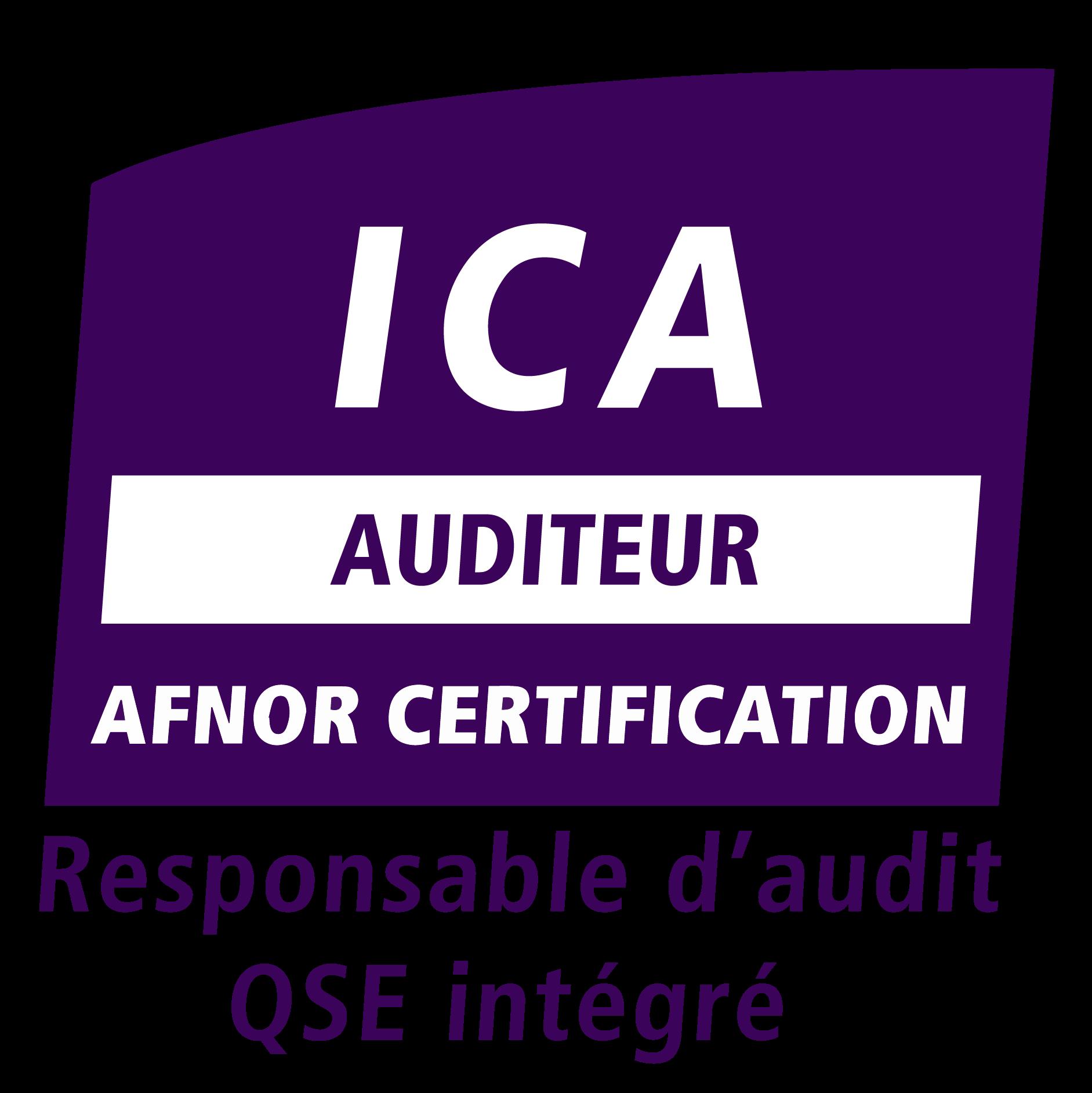 Logo ICA QSE 2